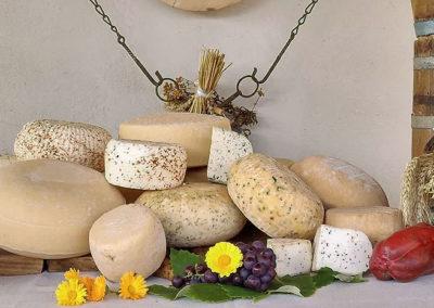 Nasze wyroby z sera